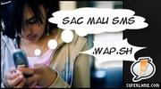 logo wap